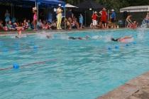 Swimming Sports 2015 - 17